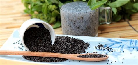 Chia Seeds Can Elevate Your Breakfast Along With Giving Some Good Health Outcomes