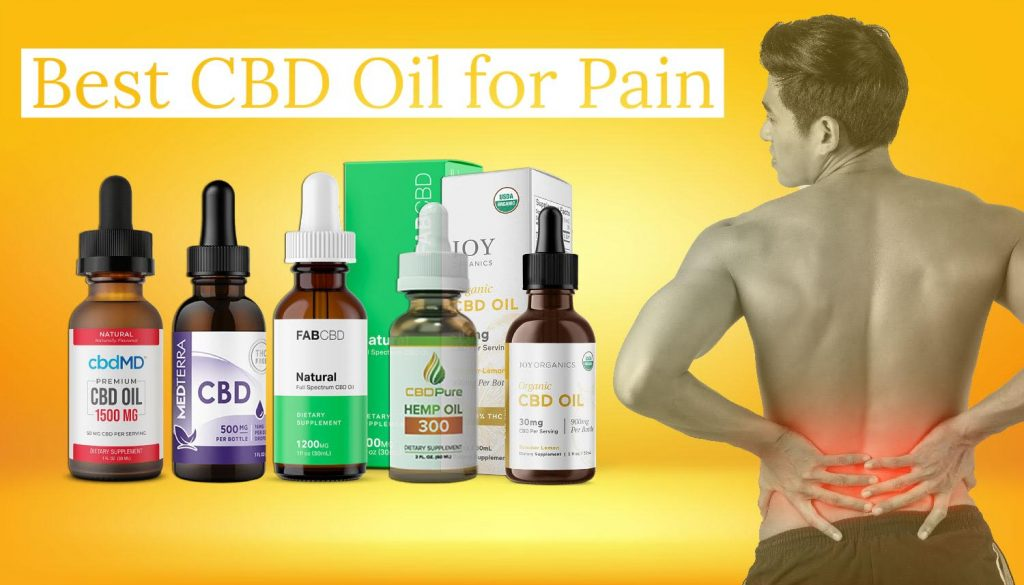 Cannabis Medicine: Treating Pain with the Best Cbd Oil